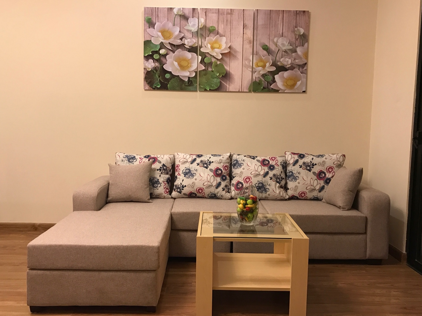 Cheap apartment in Times City